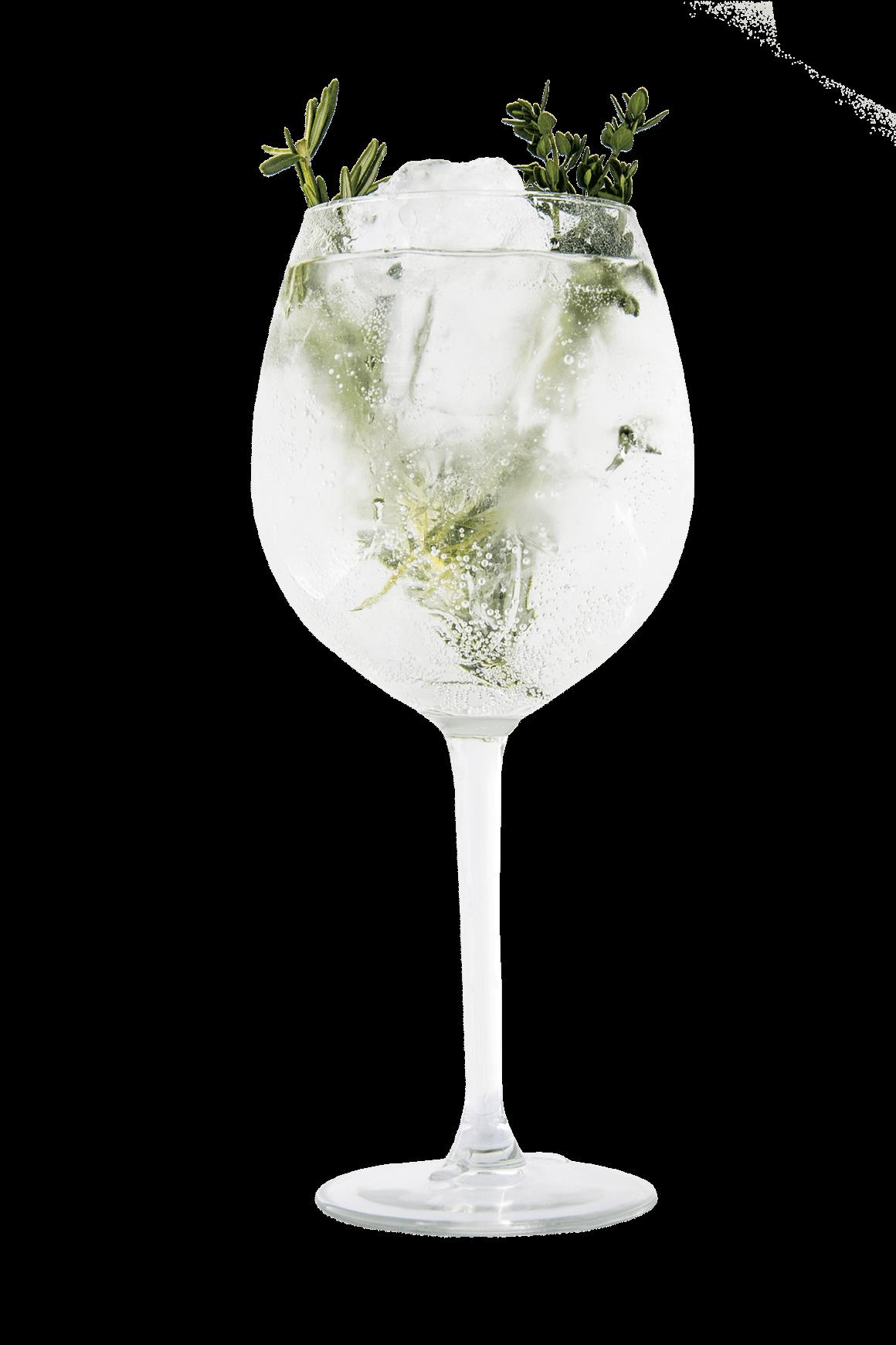 mediterranean gin tonic